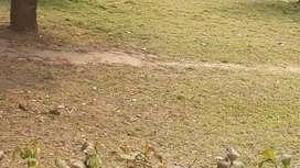 Flat land plot below byepass road gangtok...back side