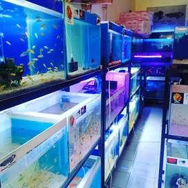 Lowongan pekerjaan jaga toko ikan hias