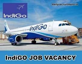 Indigo airlines airport hiring