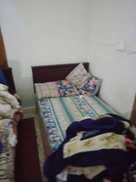 Single room for rent