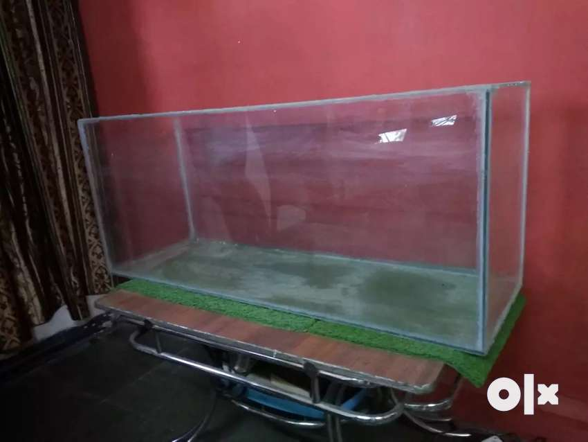 3 feet fish tank with filter 0