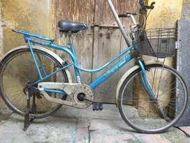 Atlas  BEAUTY DX  (ladies) bicycle