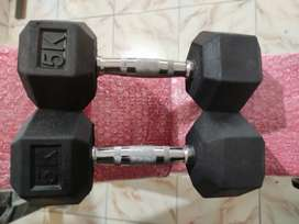 Hex Dumbbells for home gym