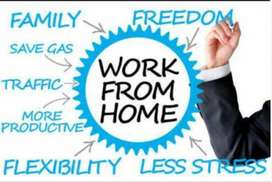 Work from home without investing money