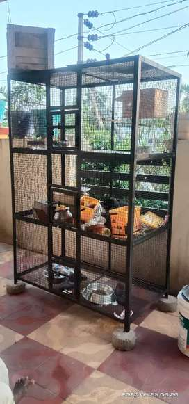 Bird breeding cage for sale