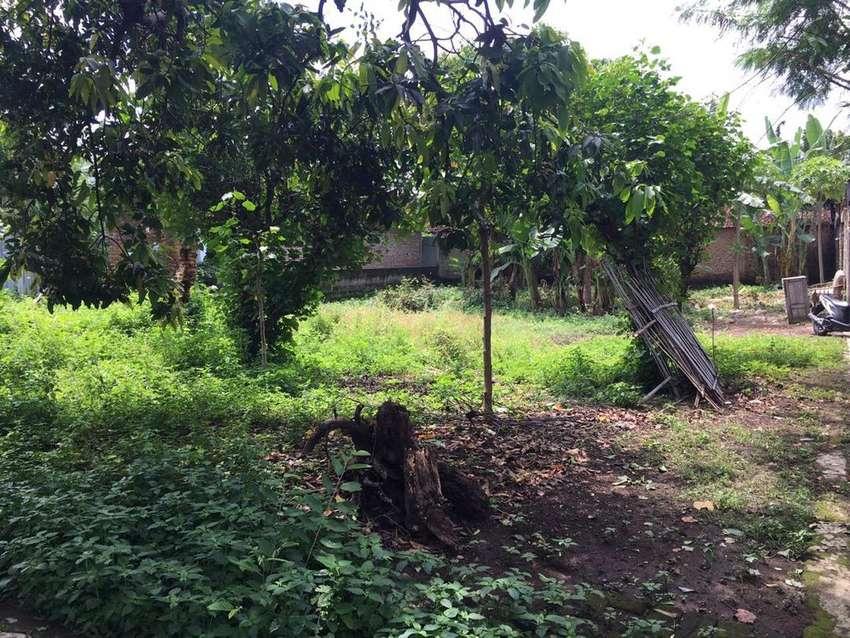 Disewakan lahan tanah kota ponorogo