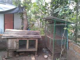 2 Hen cages
