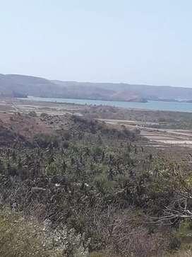 Tanah 2500 M2 full view sewa