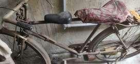 Old bangla cycle 1500