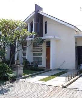 Di Sewakan / Kontrakan Rumah Minimalis Pakuan Regency Bogor