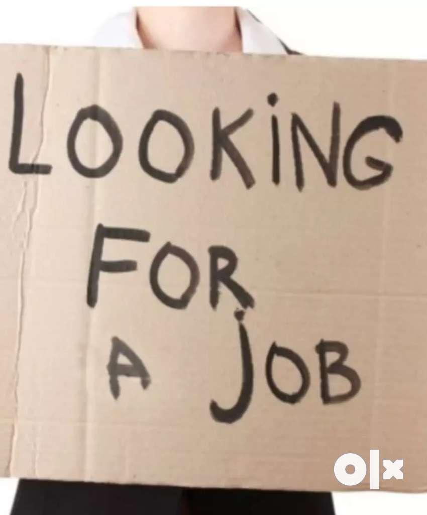 Home-based best job 0