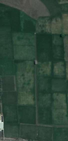 Dijual Cepat Tanah 5 Hektar Strategis