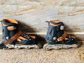 liner skates