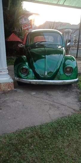 Vw kodok/beetle