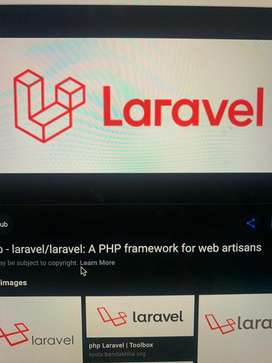 LARAVEL full time developer