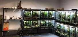 Design Aquacape & perlengkapan aquarium