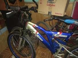 Sepeda HED Green murah