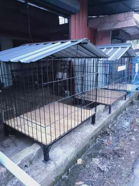 New iron dog cage