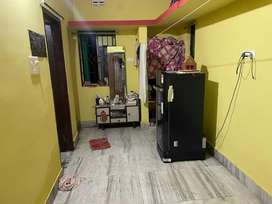 Urgently need a girl room mate