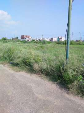 Plots in JTPL sector 115