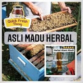 Asli Madu Herbal Madu Padi Asli Herbal Alami Abadi 1Kg