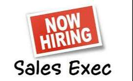 Fixed Salary + incentives for sales executives.