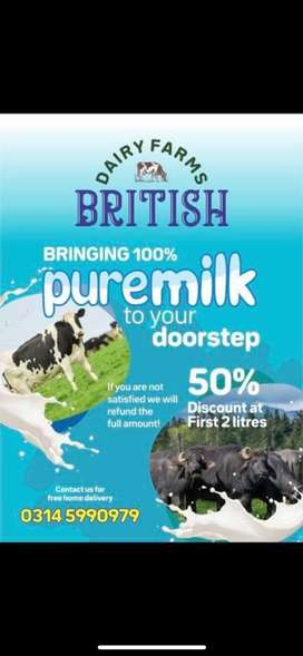 BRITISH DAIRY FARM ARE BRINGING 100% PURE AND FRESH MILK TO YOU