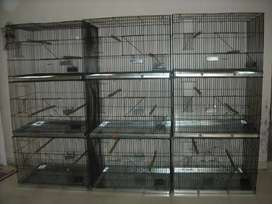 Bird cages for sale 1 month old