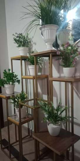 Indoor plants stand