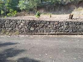 10 cent Vettickal Pulikkamaly road