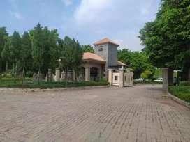 233 sqyd Plot for sale adjoining Shivalik vihar Nayagoan