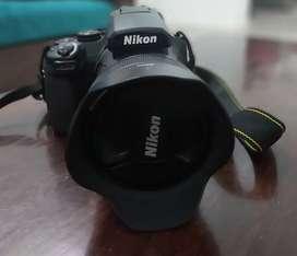 Nikon cool pics bridge camera P1000