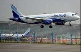 Indigo Airline Urgent Hiring For Ground Staff Aviation Meteorologist.