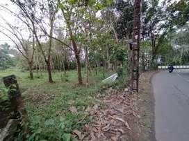 House plot 18.5cent in pala municipality