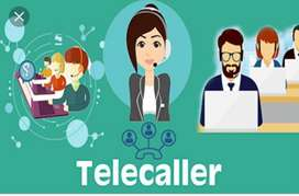 Want Telecaller & Documents collection Boy