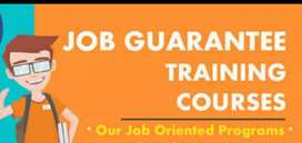 Software training with  job assistance