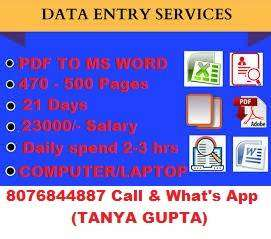 Great opportunity to earn in your free time simple data typing work