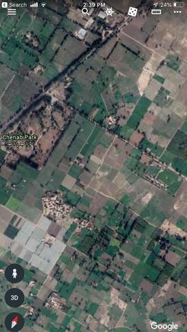 6 Acre Agriculture & Business Land sale Sofi More, Chiniot Rd. Jhang