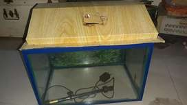 Aquarium 1.5 by 1 feet with cap and light