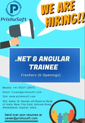 Asp dot Net Mvc/Angular Developer.