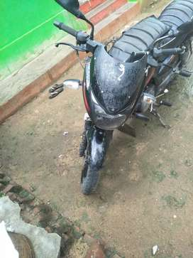 Pulsar 150 Red and black urgent sale