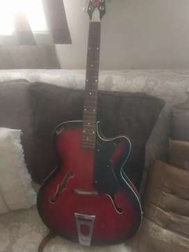 Guitar with cover