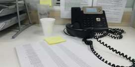 Office Assistant Female