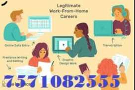 Back office executive / work from home