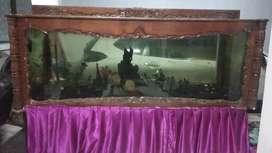 Aquarium jati kuno