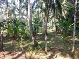 Residential land for sale in ponnukara thrissur (49 cents)