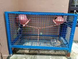 Bird cage with breeding setup