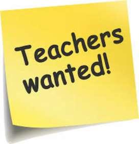 Wanted a maths teacher