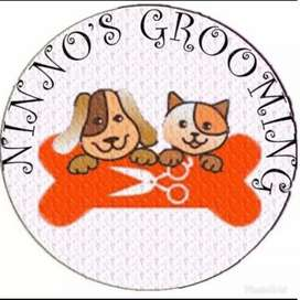 Grooming house call sby