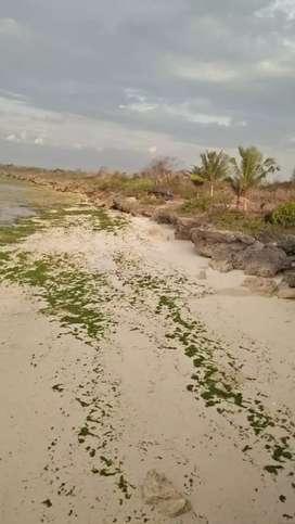 Dijual tanah pantai dan tebing Mangita Loura Sumba Barat Daya NTT